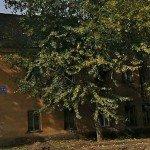 В Кирове на улице Романа Ердякова снесут несколько домов