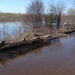 Эксперты: к 9 мая вода на подтопленных территориях опустится на 2 метра