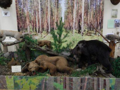 Ночные игры в ВятГУ и других музейных пространствах